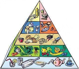 Все, что нужно знать о пирамиде питания